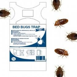 Bed Bugs Trap - Cimici dei...